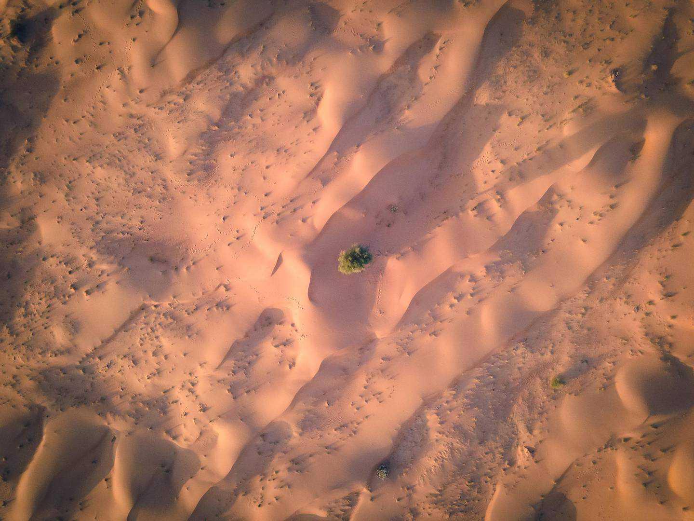 Desert-dusted Dubai roads and craggy Sharjah wadis